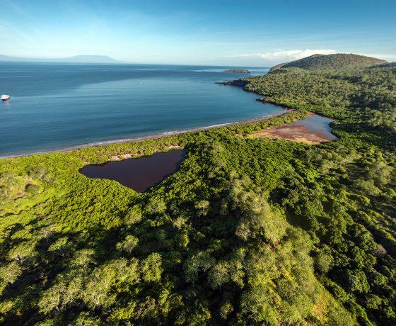 Ilha Santiago cruicero Galapagos